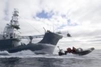 Sea Shepherd 5